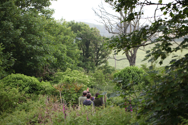 Clay Pigeon Shooting Hulverstone